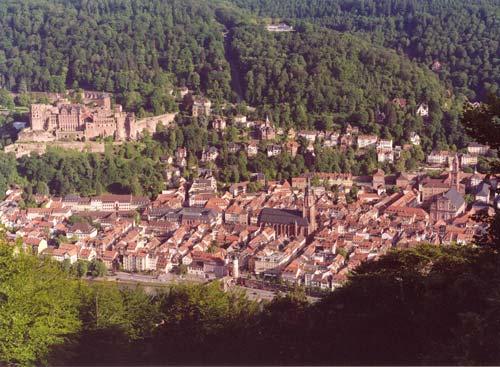 Hofnarr In Heidelberg